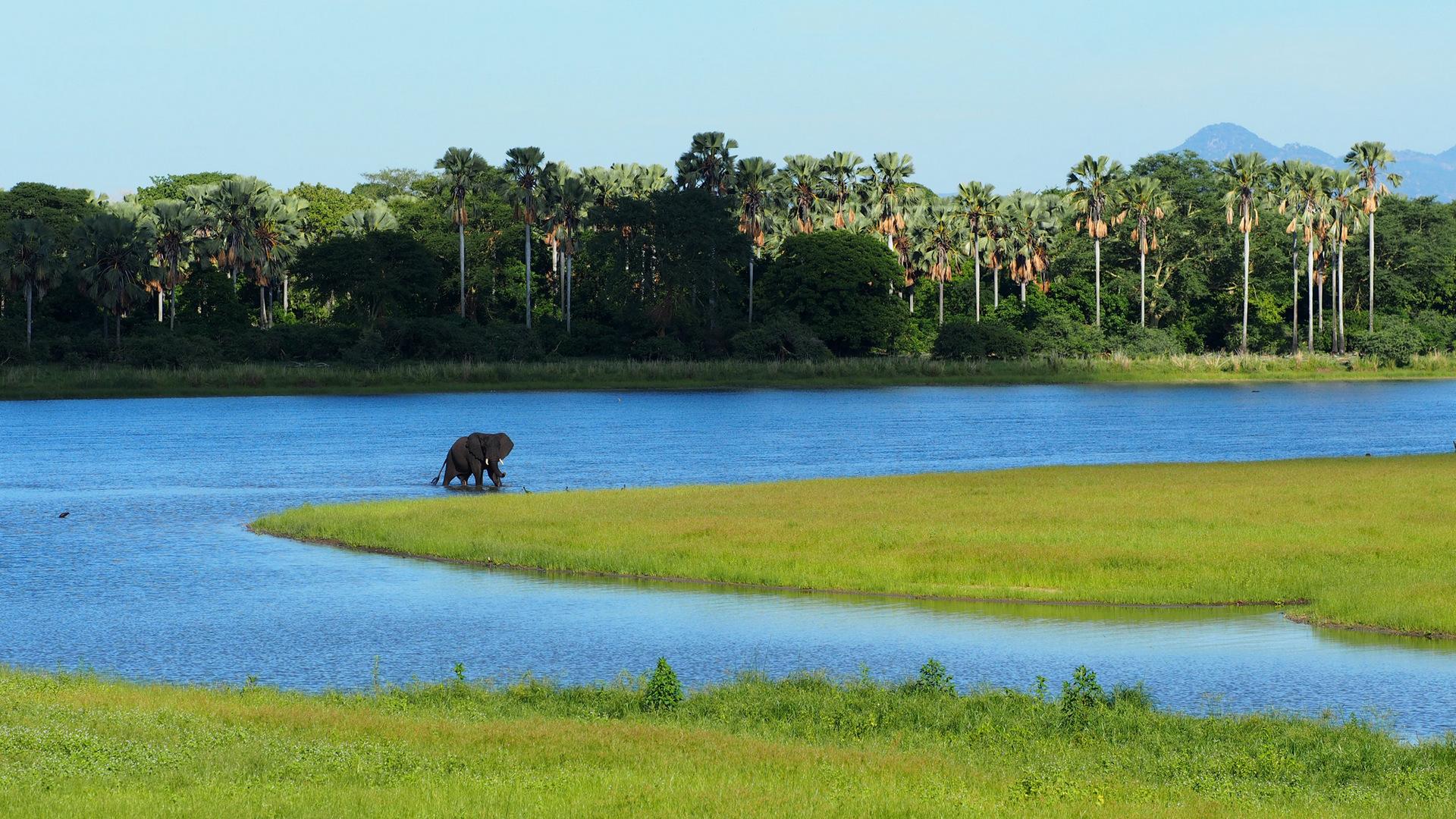 Nyika-North Luangwa