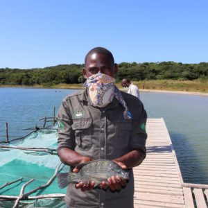 Community fish farms provide food and income
