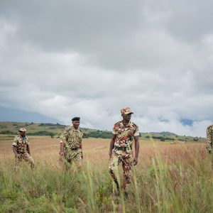 Wildlife rangers are running for their future
