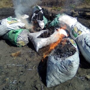 Rangers clear out 28 illegal charcoaling camps in Banhine